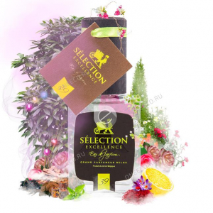 Selection Excellence №39